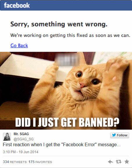 """Facebook """"sập"""" 30 phút: Thiệt hại hàng trăm ngàn USD - 3"""