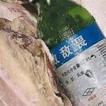 Tin tức trong ngày - TQ: Sản xuất thịt lợn đóng hộp bằng thuốc trừ sâu
