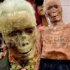 Kinh ngạc: Xác chết đi lại, tìm đường về nhà ở Indonesia