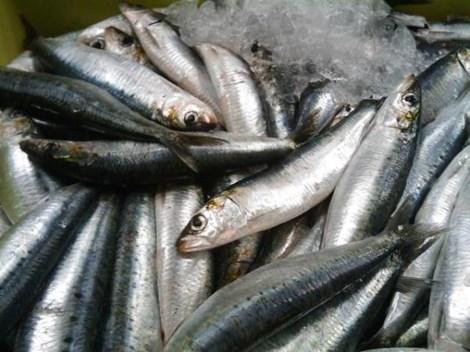 7 loại thực phẩm cung cấp omega-3 tốt nhất - 2