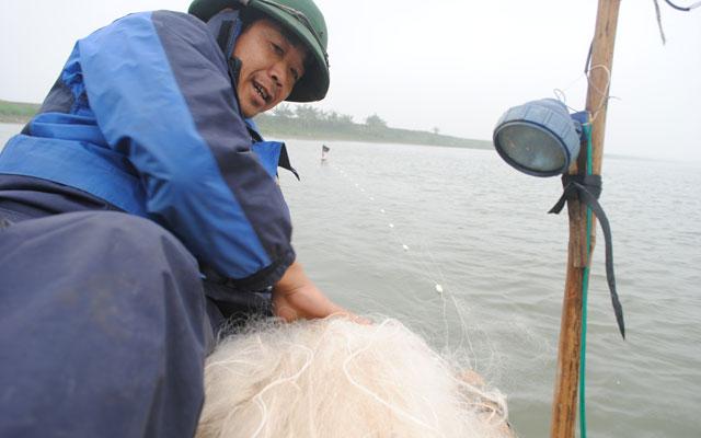 """Bắt cá mòi thu tiền triệu mỗi ngày: """"Lộc trời"""" trên sông - 1"""