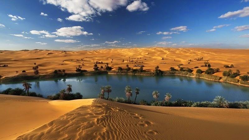 Choáng ngợp vẻ đẹp của ốc đảo giữa lòng sa mạc Sahara - 2