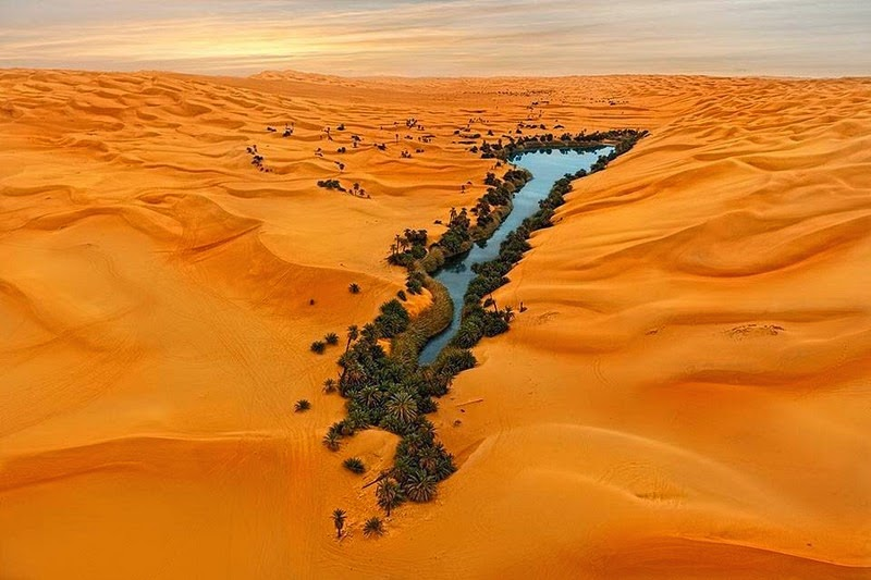 Choáng ngợp vẻ đẹp của ốc đảo giữa lòng sa mạc Sahara - 1