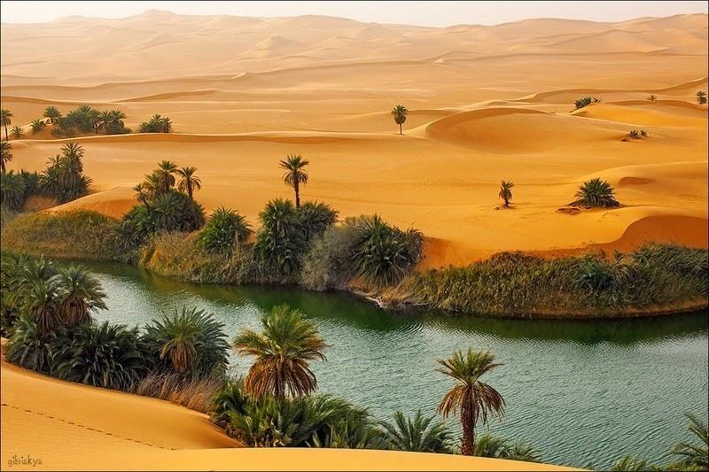 Choáng ngợp vẻ đẹp của ốc đảo giữa lòng sa mạc Sahara - 4