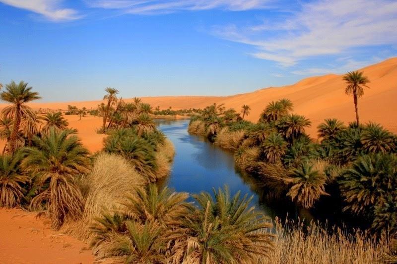 Choáng ngợp vẻ đẹp của ốc đảo giữa lòng sa mạc Sahara - 5