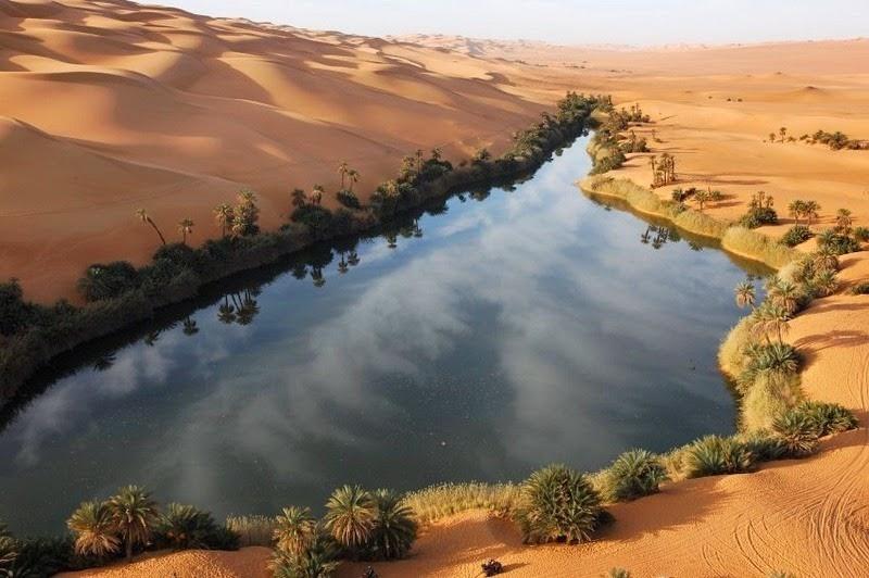 Choáng ngợp vẻ đẹp của ốc đảo giữa lòng sa mạc Sahara - 6
