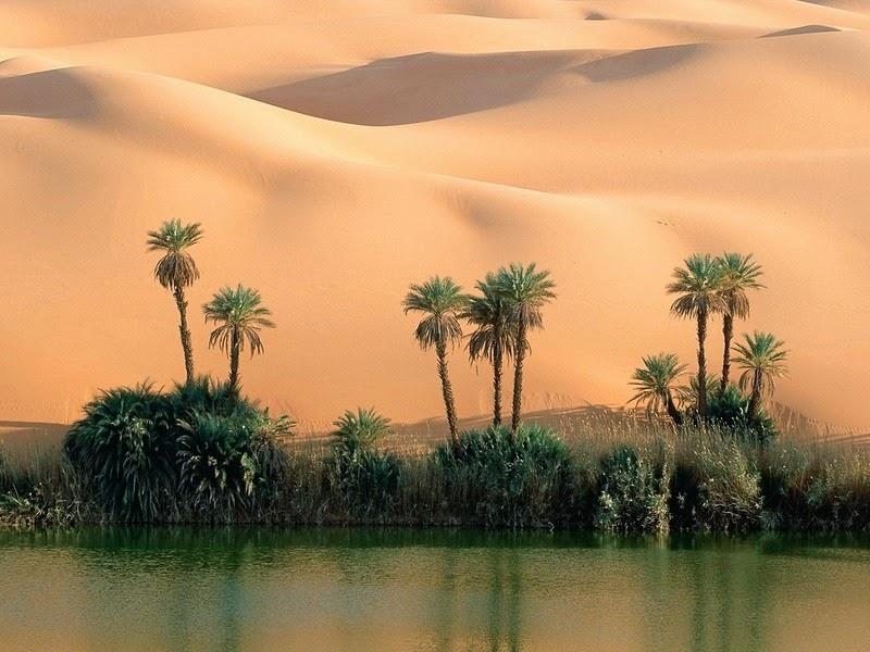 Choáng ngợp vẻ đẹp của ốc đảo giữa lòng sa mạc Sahara - 7