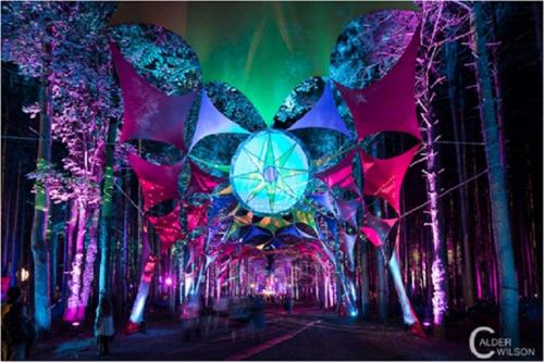 Khám phá 11 lễ hội thú vị nhất thế giới - 2