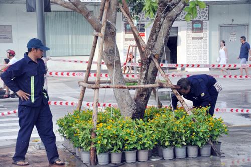 Phố đi bộ hiện đại nhất Việt Nam trước giờ mở cửa - 3