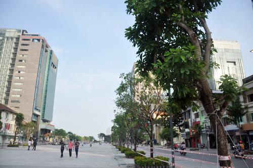 Phố đi bộ hiện đại nhất Việt Nam trước giờ mở cửa - 13