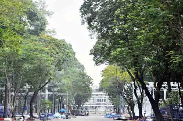 Ảnh: Sài Gòn xưa và TP.HCM hôm nay - 10