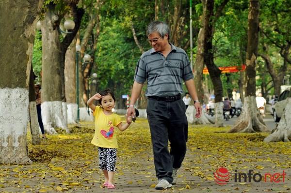 Hà Nội đẹp dịu dàng mùa lá rụng - 9