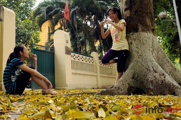 Hà Nội đẹp dịu dàng mùa lá rụng - 8