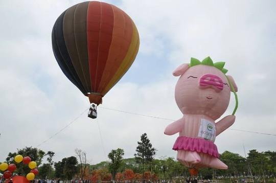 Lễ hội khinh khí cầu: Khinh khí cầu không bay, chỉ đứng - 2