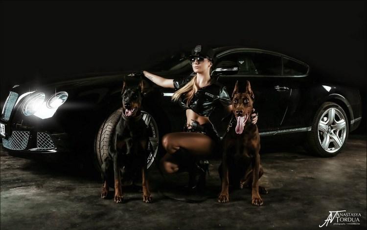 """Phong cách thời trang cực ngầu cùng đôi chú khuyển đã khiến chiếc xế BMW 6 Series hiện diện như một  """" mãnh thú """"  mạnh mẽ."""