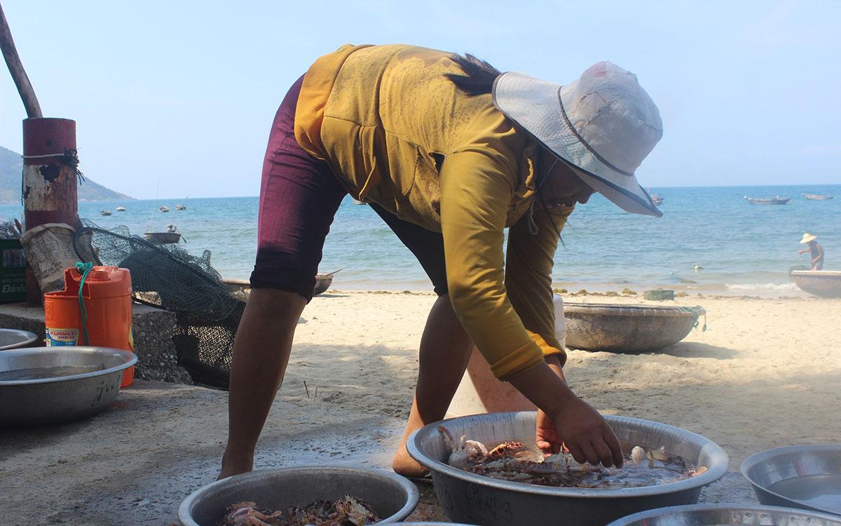 """Chợ hải sản tươi ngon có """"view đẹp nhất nhì Việt Nam"""" - 3"""