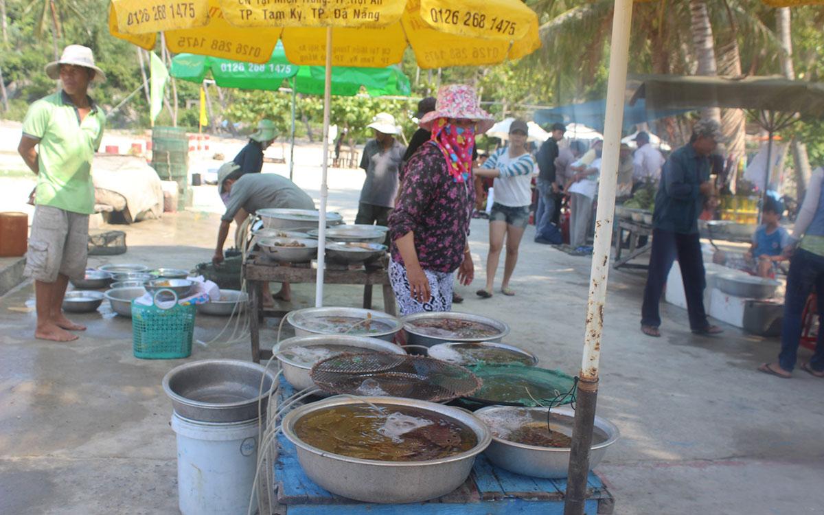 """Chợ hải sản tươi ngon có """"view đẹp nhất nhì Việt Nam"""" - 9"""