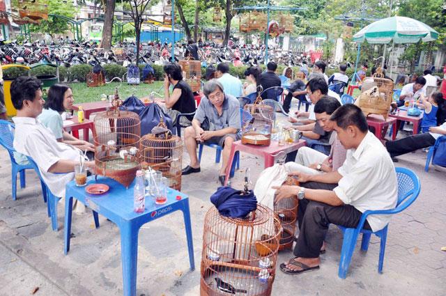 Bộ ảnh: Sống chậm giữa Sài Gòn nhanh - 1