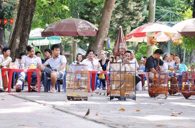 Bộ ảnh: Sống chậm giữa Sài Gòn nhanh - 19
