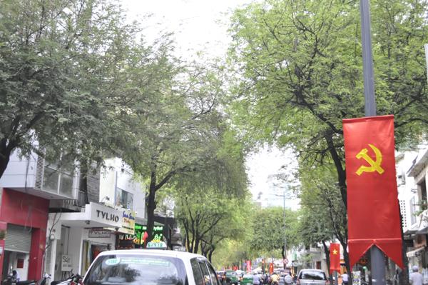 Ảnh: Sài Gòn mộng mơ với những con đường lá me bay - 2