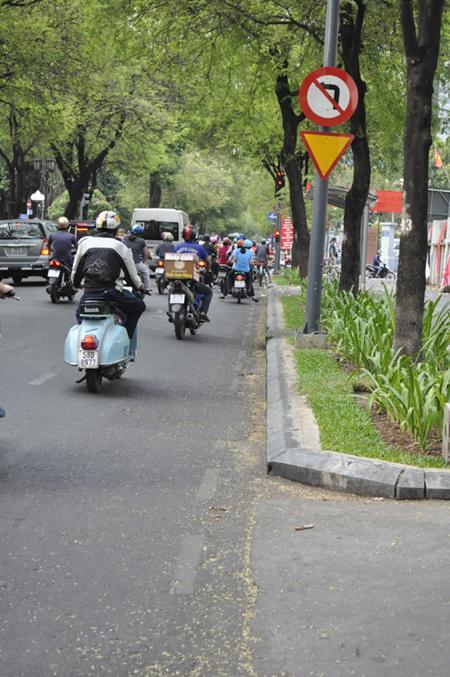 Ảnh: Sài Gòn mộng mơ với những con đường lá me bay - 7