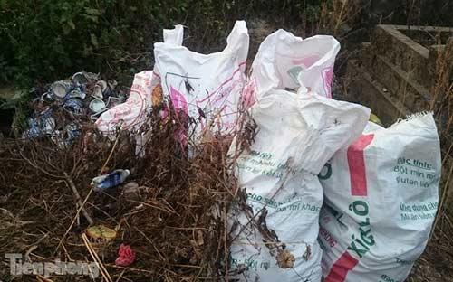 Hà Nội: Hơn 300 ngôi mộ bị đập vỡ bát hương - 2