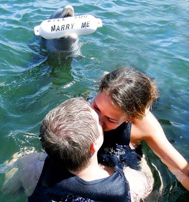 Những màn cầu hôn lãng mạn khiến bao người ao ước - 7