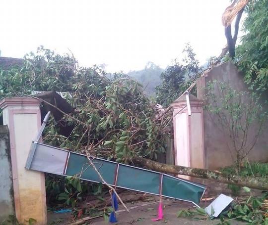 Lốc xoáy, gần trăm nhà tốc mái, nhiều người thoát chết - 1