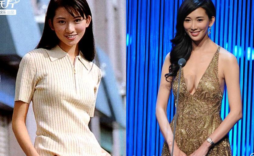 Năm 2004 khi Lâm Chí Linh bắt đầu tham gia làng giải trí, truyền thông xứ Đài đều nhắc đến tên tuổi cô dù cô không tham gia diễn xuất, không ca hát và tuổi tác cũng không còn quá trẻ, thế nhưng chân dài này lại vô cùng nổi tiếng. Lâm Chí Linh chỉ được biết đến là một người mẫu, cô tham gia quảng cáo, rồi làm MC, đóng phim... và ở lĩnh vực nào cô cùng giành được sự chú ý bởi ngoài khả năng còn có sự thu hút ở sắc vóc khó cưỡng toát ra từ người đẹp này.