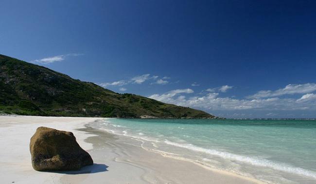 Bãi biển dừa, đảo Lizard, Úc nằm cách khoảng 150 dặm từ bờ biển Queensland và bạn chỉ có thể đến đây bằng máy bay riêng. Khi đến nơi đây, khách du lịch có thể lặn xuống biển và khám phá những rạn san hô tuyệt đẹp, các loài cá đầy màu sắc, rùa biển. Đây là bãi biển hoang sơ, hẻo lánh nhưng lại khá yên tĩnh và tuyệt đẹp. Nơi đây phù hợp với những cặp đôi thích không gian lãng mạn và bình yên.