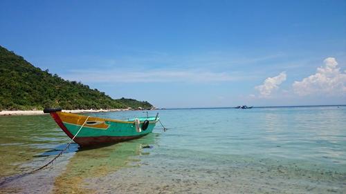 Ngắm san hô và đáy biển kỳ thú ở Cù Lao Chàm - 1