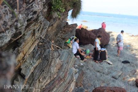Đẹp hoang sơ ghềnh đá biển Rạng trên đất Quảng - 5