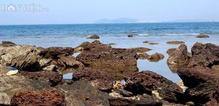 Đẹp hoang sơ ghềnh đá biển Rạng trên đất Quảng - 8