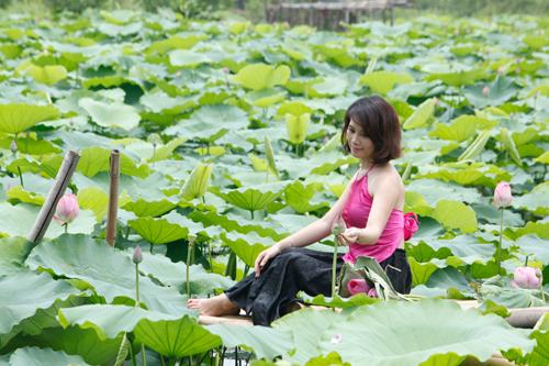 Chị em Hà Thành nô nức mặc yếm đào chụp ảnh sen - 1