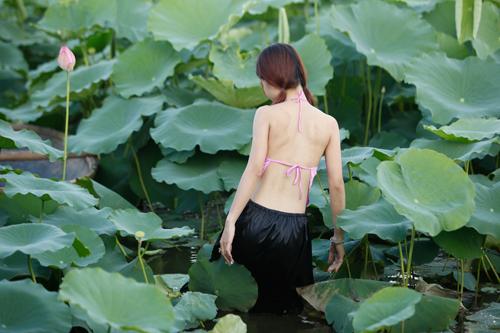 Chị em Hà Thành nô nức mặc yếm đào chụp ảnh sen - 10