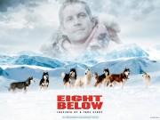 Trailer phim: Eight Below