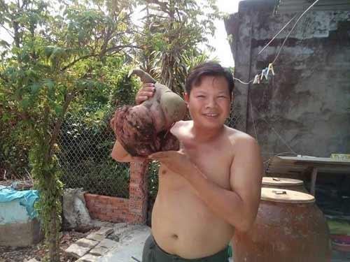 Phát hiện củ khoai lang hình thù lạ, nặng 6 kg - 1