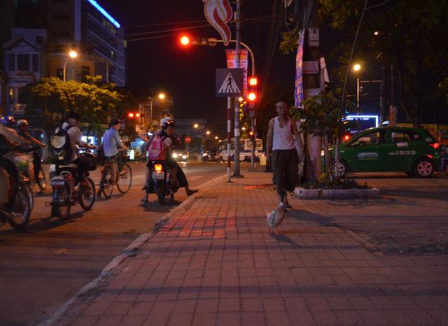 Video: Vịt tung tăng dạo phố ở Thái Bình - 1