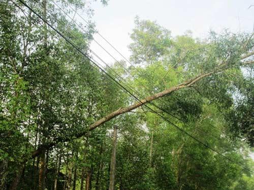 Hà Tĩnh: Lốc xoáy làm tốc mái gần 300 ngôi nhà - 2