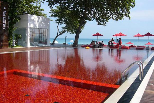 13 bể bơi độc, lạ nhất hành tinh - 12