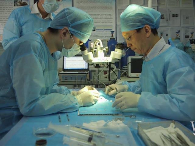 Bác sĩ TQ thực hiện 1000 ca phẫu thuật cắt lìa đầu - 1