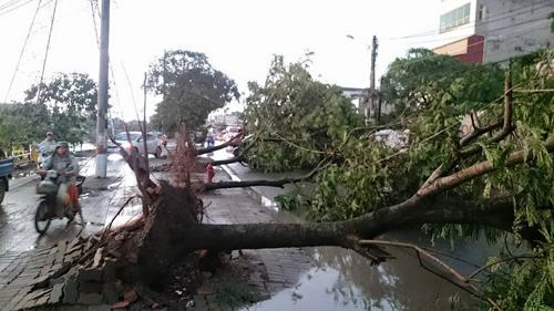 Ảnh: Giông lốc kinh hoàng, giao thông Hà Nội nhiều nơi tê liệt - 18