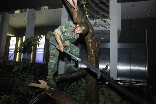 Bộ đội trắng đêm thu dọn cây đổ trong nội thành Hà Nội - 3