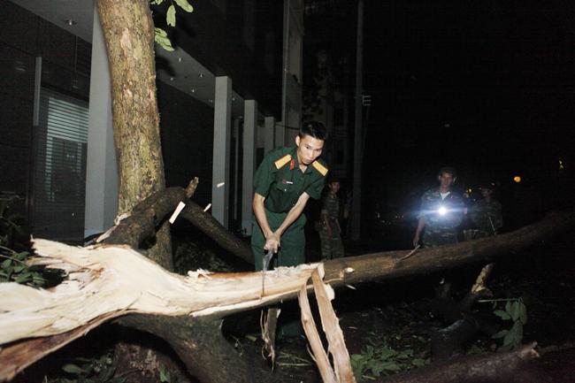 Bộ đội trắng đêm thu dọn cây đổ trong nội thành Hà Nội - 4