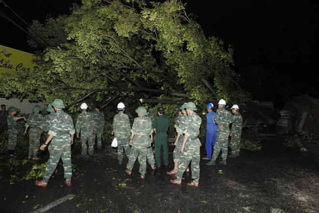 Bộ đội trắng đêm thu dọn cây đổ trong nội thành Hà Nội - 12