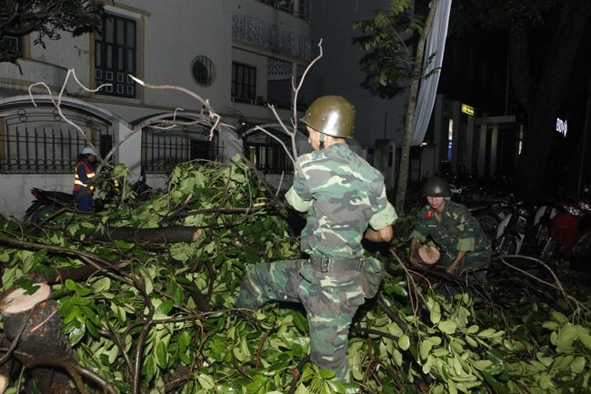 Bộ đội trắng đêm thu dọn cây đổ trong nội thành Hà Nội - 8