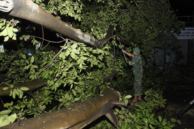 Bộ đội trắng đêm thu dọn cây đổ trong nội thành Hà Nội - 15