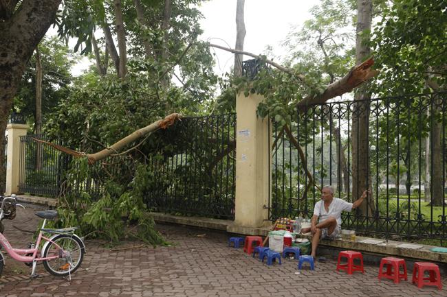 HN cấm đường, đóng cửa công viên sau trận cuồng phong - 15