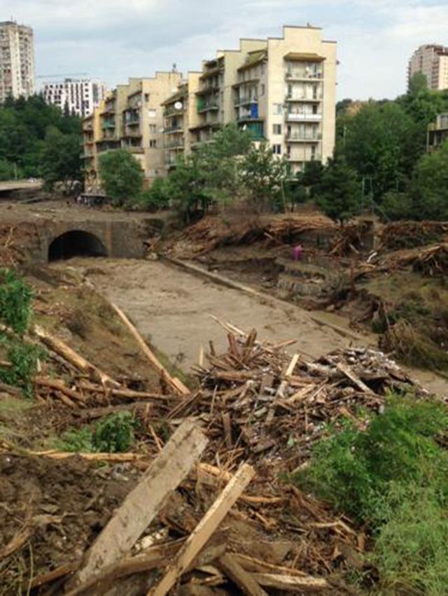 """Gruzia: Sau lụt, thú dữ xổng chuồng """"dạo chơi"""" khắp phố - 2"""