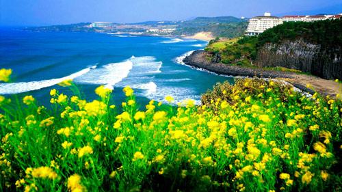 Du lịch Hàn Quốc - Mùa nào cũng đẹp! - 1
